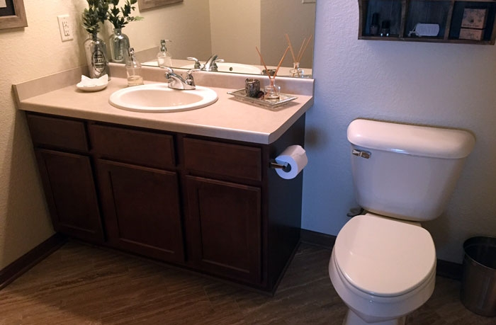GeneWagnerPlumbing_bathroom1
